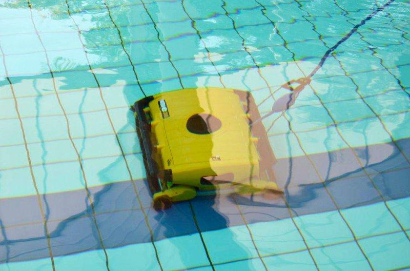 דולפין Wave XL 300