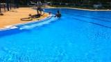 בריכות שחייה ציבוריות